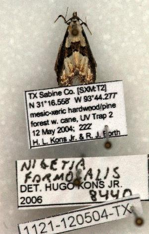 ( - 1121-120504-TX)  @13 [ ] Copyright (2008) Robert J. Borth Research Collection of Robert J. Borth