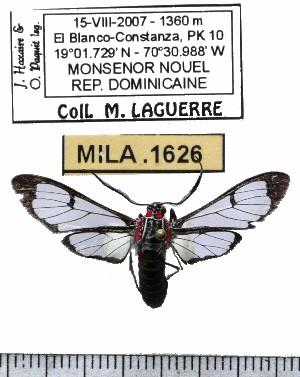 ( - MILA 1626)  @12 [ ] Copyright (2012) Michel Laguerre Research Collection of Michel Laguerre
