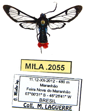 ( - MILA 2055)  @14 [ ] Unspecified (default): All Rights Reserved  Unspecified Unspecified